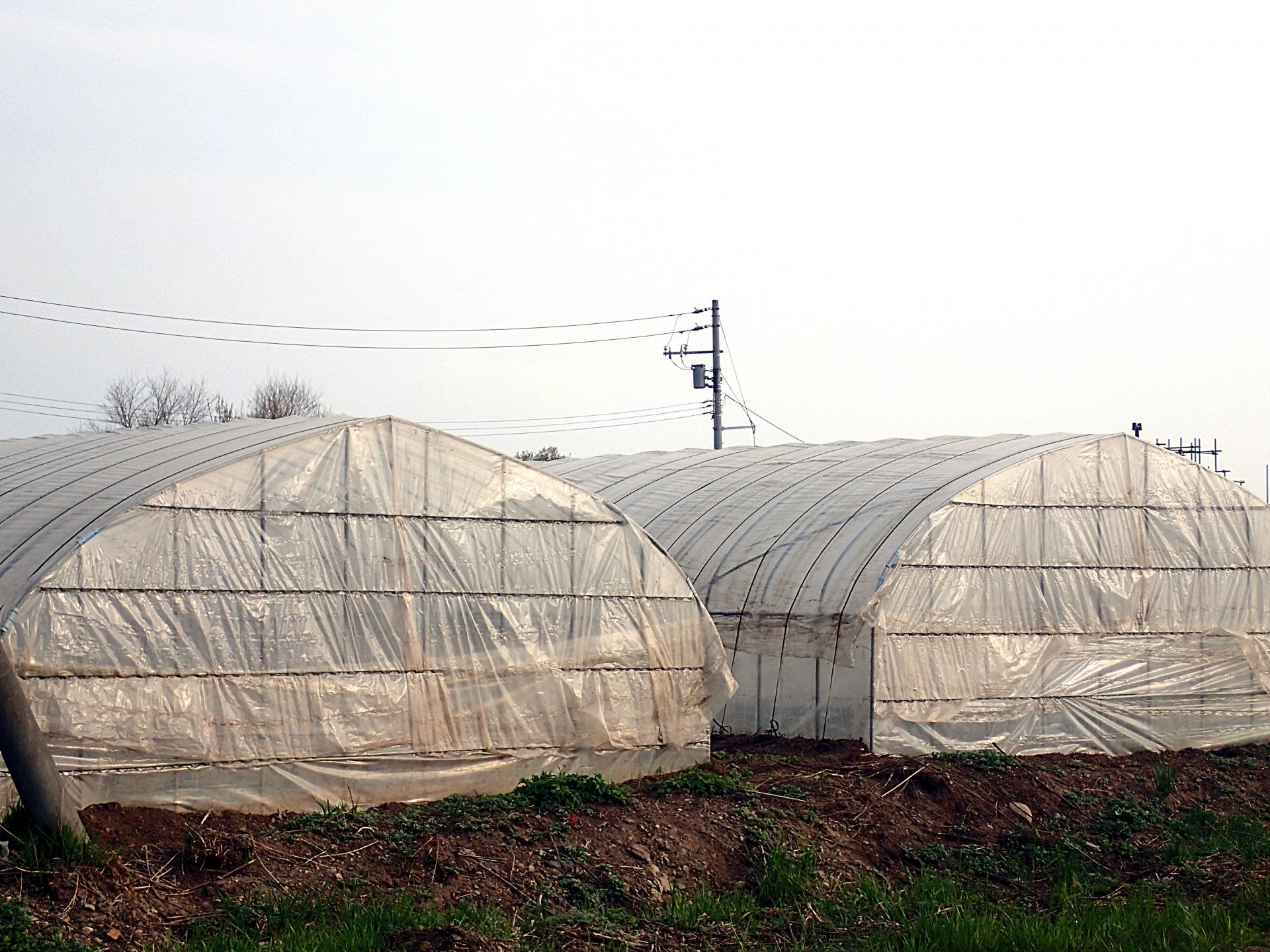 【IoT活用事例】スマート農業とは?IoT・ICTを活用したスマート農業の導入メリットと課題とは