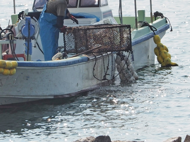 【IoT活用事例】漁業・水産業向け海洋情報モニタリング