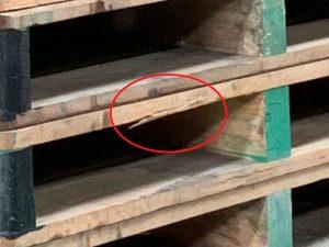中古木製パレット破損箇所画像